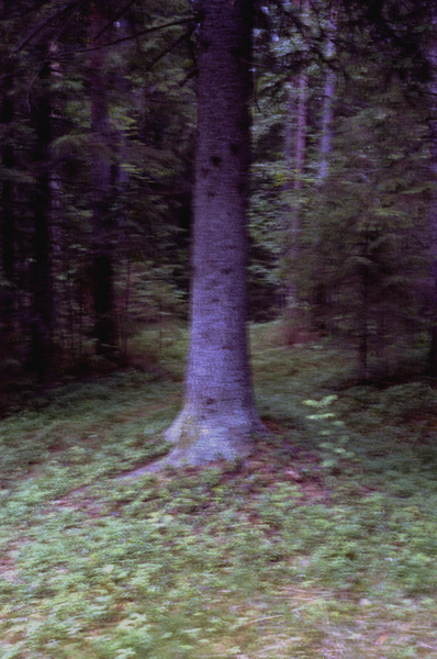 Blog_4-scan0014-edit